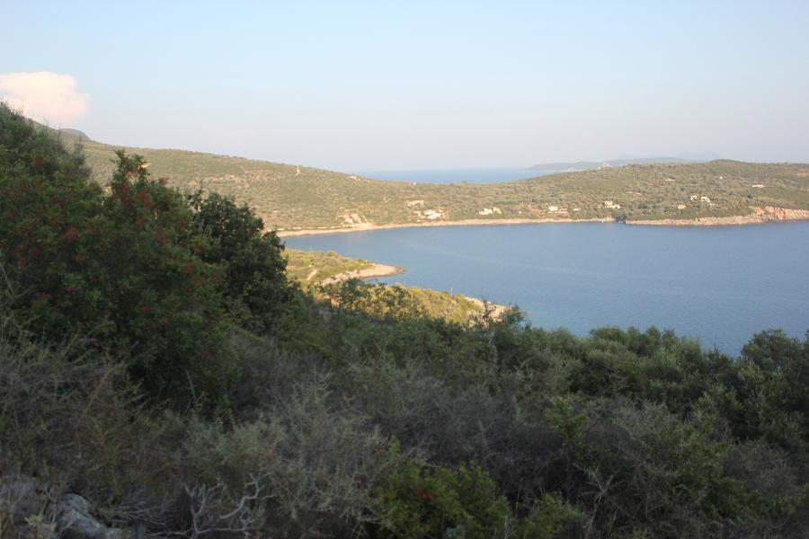 plot in amouso